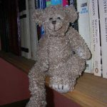 Profile photo of teddy bear Lagbehind
