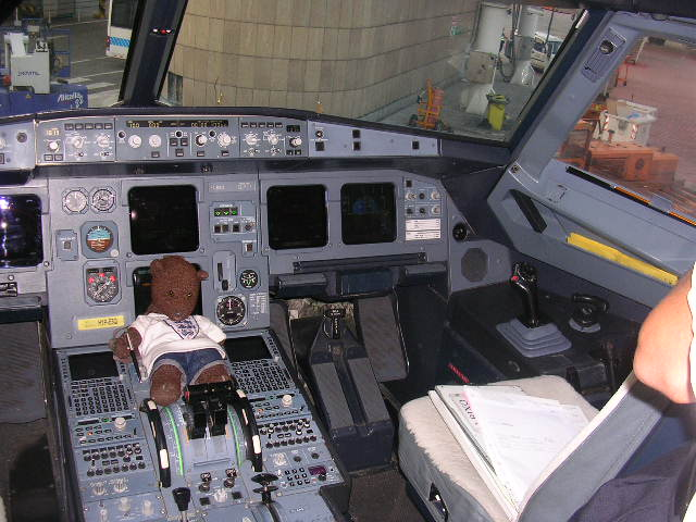 Bearsac sitting in cockpit of aeroplane