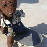 Teddy bear Bearsac on a skatebaord