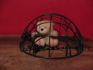 Teddy bear under upturned plant-holder as though is a cage