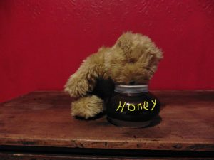Teddy bear and pot of honey