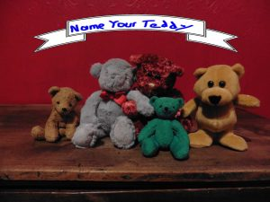 Group of teddy bears with banner reading Name your teddy.