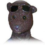 About Bearsac thumbnail to link to About Bearsac