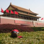 Bearsac lodged in bush in front of Tiananmen Tower