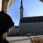 Bearsac in front of Tallinn Town Square