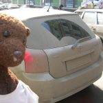 Bearsac beside a very very dirty car