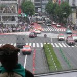 Bearsac in foreground of Shibuya crossing during drivers turn