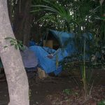 Homemade tarpaulin tents among trees