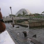 Bearsac at Japan's Kobe Earth quake memorial.