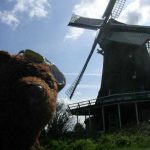 Photo of Bearsac beside a windmill