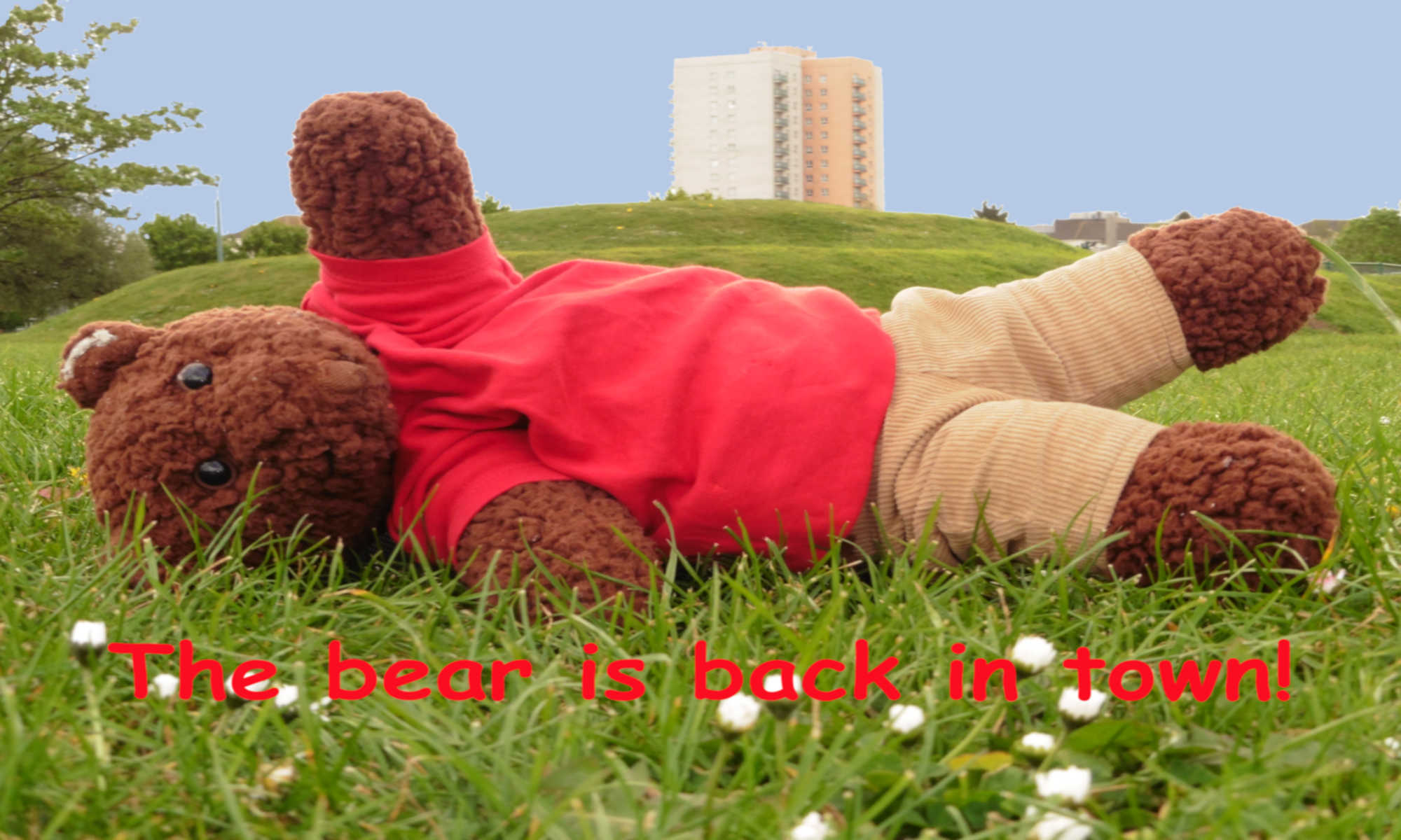 Hero image. Bearsac lying on grass with tower block in background.