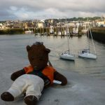 Bearsac at the harbour.