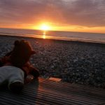 Bearsac on the beach at sunset.