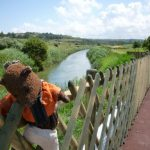 Bearsac on fence with river in background.