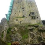 Bearsac looking up at Blarney Castle
