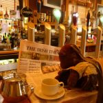 Bearsac sitting on a pub bar, reading the Irish Times
