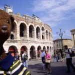 Bearsac in foreground of Verona Arena