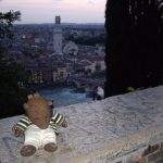 Bearsac on a wall with high view of Verona