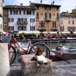 Bearsac by small harbour in Desenzano