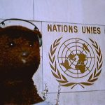 Bearscac beside the United Nations sign