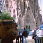 Bearsac in foreground of Sagrada Familia Basilica